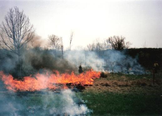 fire591