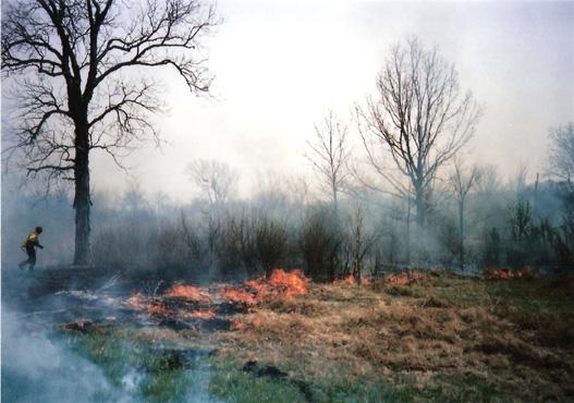 fire592